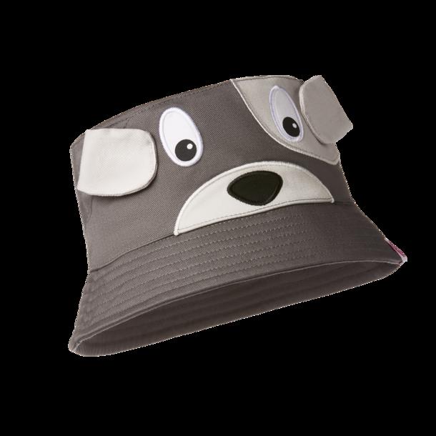 Bøllehat Hund